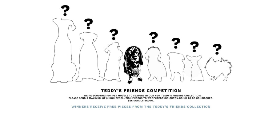 DO YOU HAVE A PET? GET INVOLVED! - TEDDY'S FRIENDS COMPETITION