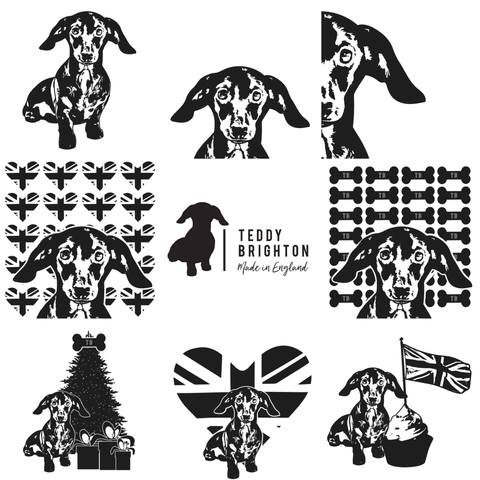 TEDDY'S NEW COLLECTION!!