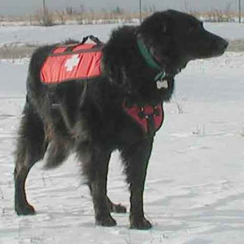 CASCADE -  Rescue Dog Patrol Pack