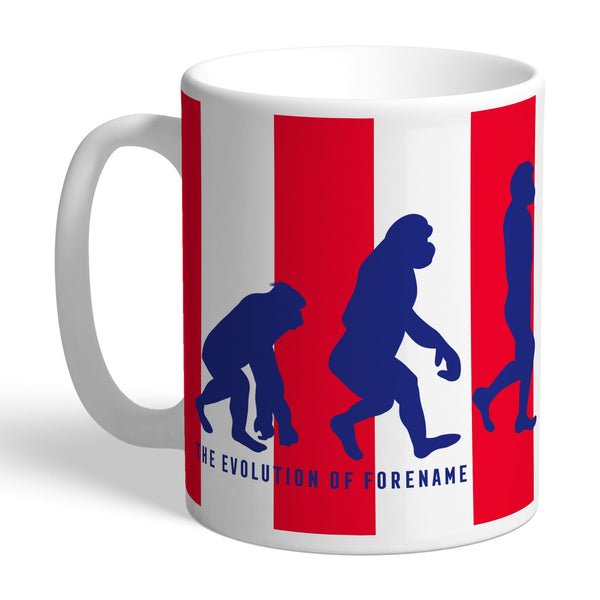Stoke City Evolution Mugs, Gifts