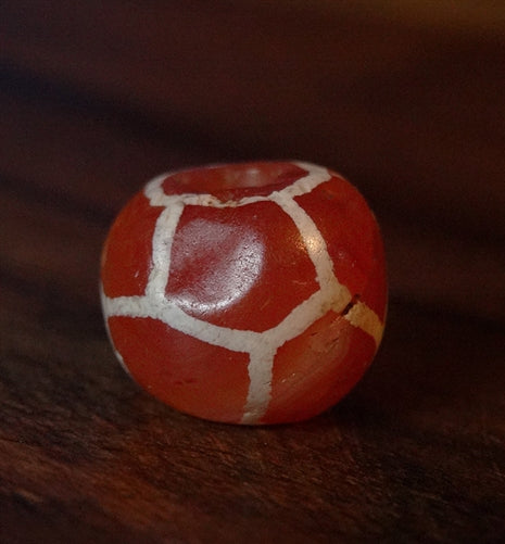 Ancient Longevity Carnelian - 11mm