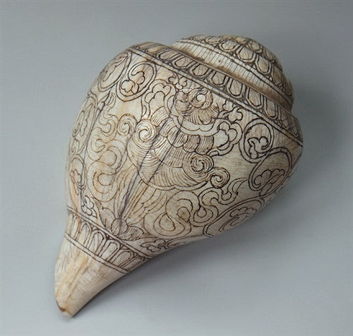 Large Ritual Conch Shell - Finely Engraved