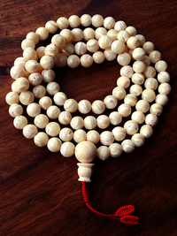 Mother of Pearl Mala with conch guru bead - 10mm