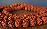 Natural Rudraksha Mala - Two Sizes Available