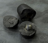 Saligram Stone - Golden Lingam