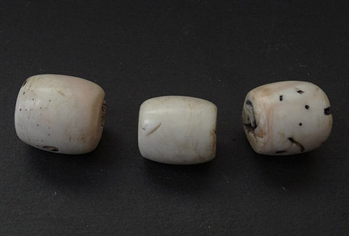 Three Huge Conch Shell Beads