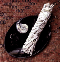 Large Stone Dish with Fossil Matrix for Smudging - Ash Catcher