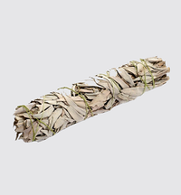 Large California White Sage Smudge Stick - 8 inches