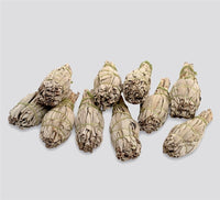 Premium California White Sage Smudge Sticks (Pack of 10 Small Size Bundles)