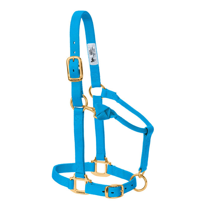 Weaver Adjustable Nylon Halter - Turquoise