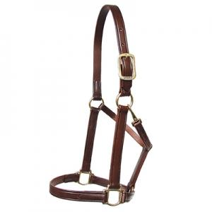 Walsh Heritage Leather Halter