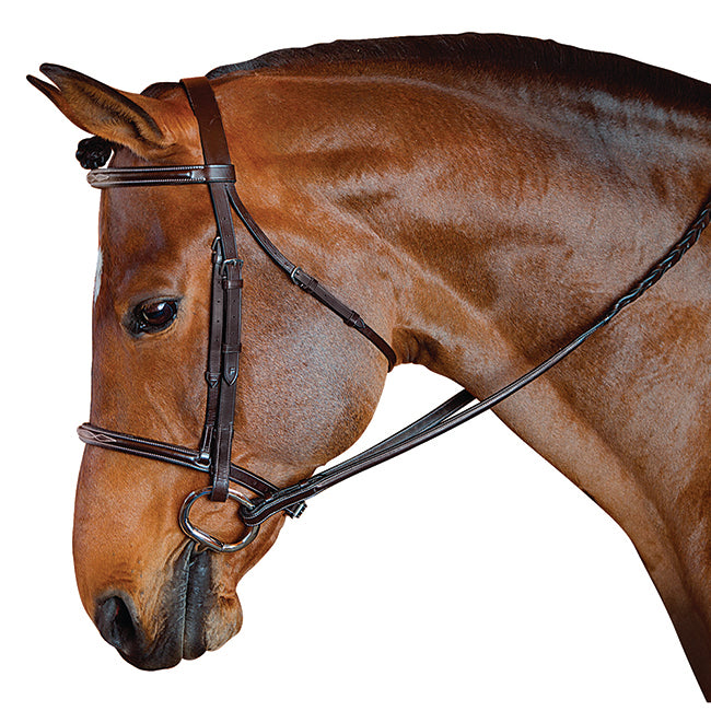 M. Toulouse Standard Pony Hunter Bridle