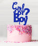 Girl or Boy Baby Shower Cake Topper Acrylic Blue
