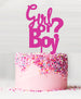 Girl or Boy Baby Shower Cake Topper Acrylic Hot Pink
