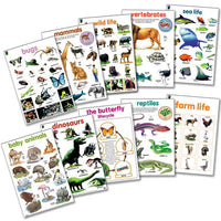 Educat Poster Pack Animal World