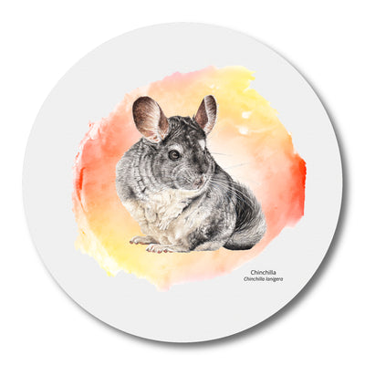 Mousepad Chinchilla