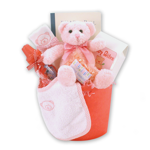 Bear Necessities Baby Girl Gift Basket
