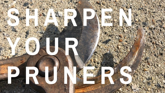 How to Sharpen Pruners and Loppers (and an occasional shovel)