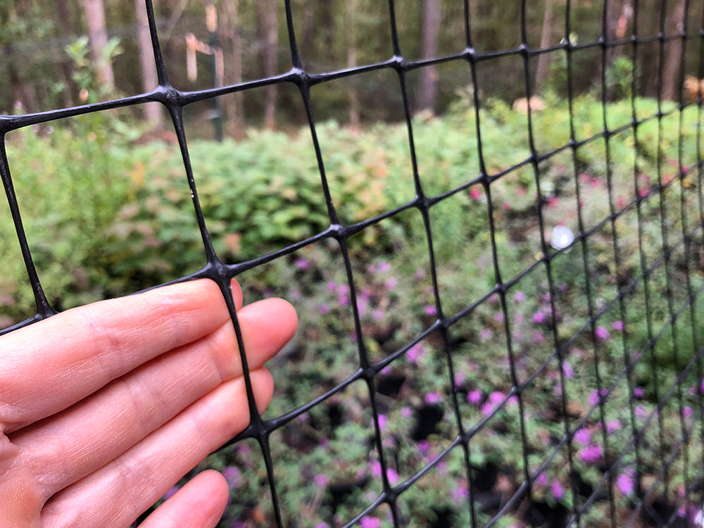 fencing for deterring deer