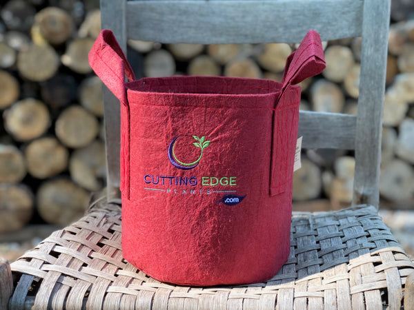 Root Pouch Gift Bag