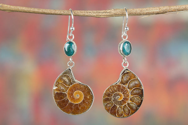 Ammonite Gemstone Sterling Silver Earring