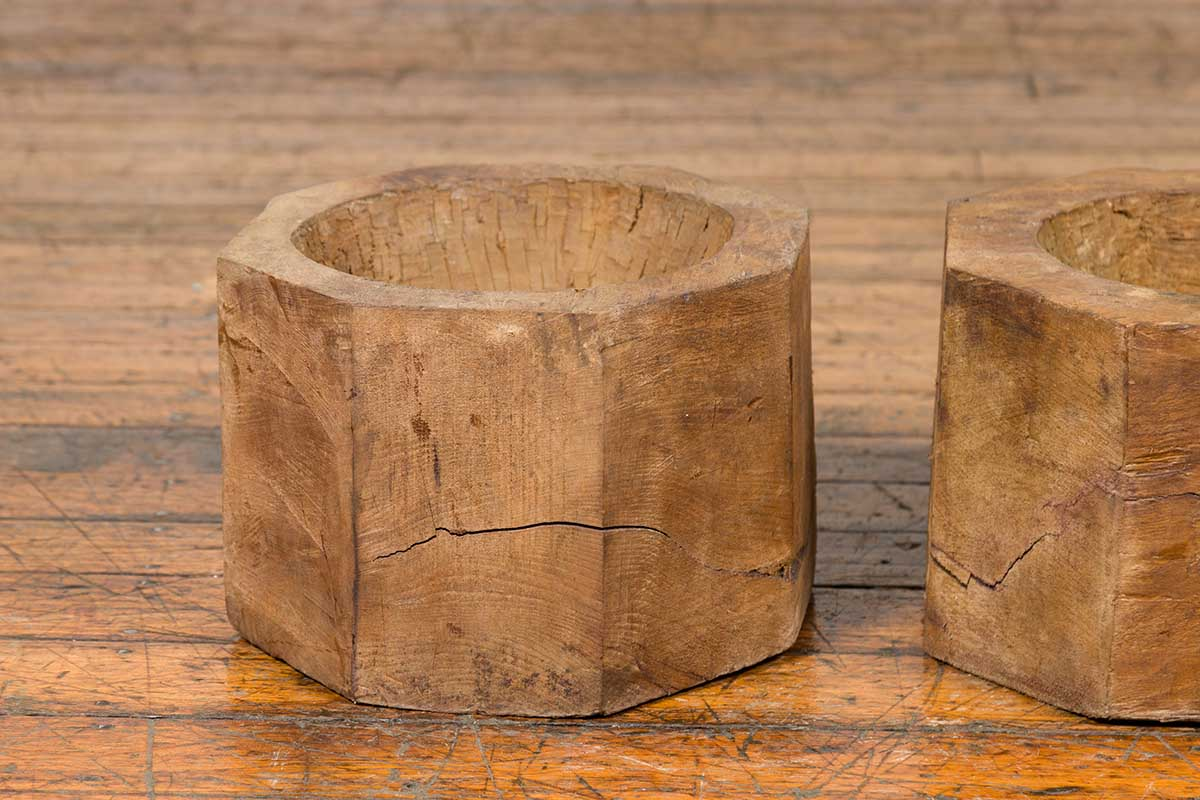 Antique Indonesian Rustic Octagonal Wooden Planters Made from Tree Trunks