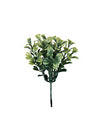 Boxwood Pick - Set of 288 - Green