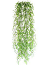 "Sprengeri Fern Hanging Plant - 46"" Long - Box of 6 - Green"