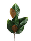 "Magnolia Foliage Pick - 24"" Tall - Set of 12 - Green"