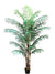 Areca Palm Tree - 7' Tall - Box of 2 - Green