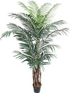 Areca Palm Tree - 8' Tall - Box of 2 - Green