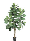 Fiddle-Leaf Fig Tree - 6' Tall - Box of 2 - Green