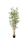 Bamboo Tree - 5' Tall - Set of 4 - Green