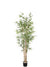 Bamboo Tree - 5' Tall - Box of 4 - Green