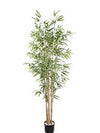Bamboo Tree - 6' Tall - Set of 2 - Green