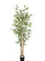 Bamboo Tree - 6' Tall - Box of 2 - Green