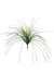 "Mondo Grass Bush - 23"" Tall - Box of 24 - Two Tone Green"