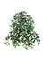 "Mini English Ivy Hanging Plant - 20"" Long - Box of 12 - Green"