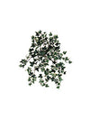 "Mini English Ivy Hanging Plant - 13"" Long - Box of 12 - Choice of Color"