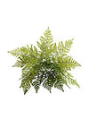 "Leather Fern Bush - 28"" Diameter - Set of 6 - Green"