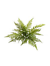 "Boston Fern - 28"" Diameter - Set of 6 - Green"