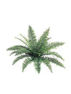 "Boston Fern - 28"" Diameter with 22 Fronds - Set of 12 - Green"