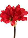 "Amaryllis Stem - 29.5"" Tall - Set of 12 - Choice of Color"