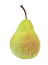 "Pear - 4"" Tall - Box of 12 - Choice of Color"
