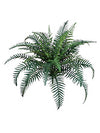 "River Fern - 38"" Diameter with 40 Fronds - Set of 6 - Green"