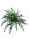 "River Fern - 38"" Diameter with 30 Fronds - Box of 6 - Green"
