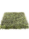"Boxwood Mat - 20"" Square - Set of 4 - Green"