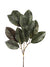 "Magnolia Foliage Spray - 32"" Tall - Box of 12 - Green"