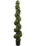 Boxwood Topiary Spiral - 6' Tall - Green
