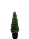 "Boxwood Topiary Cone - 30"" Tall - Green"